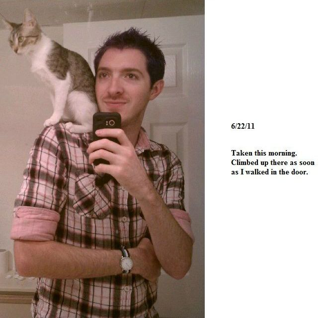 Shoulder Kitty Growing Timeline (7 pics)