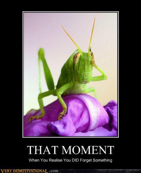 Funny Demotivational Posters (48 pics)