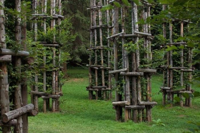 Tree Cathedral by Giuliano Mauri (13 pics)