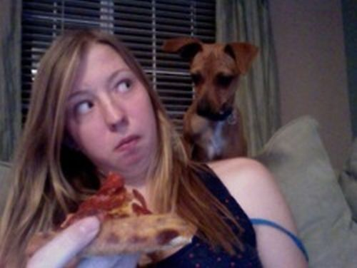Eating Pizza With Dogs (6 pics)