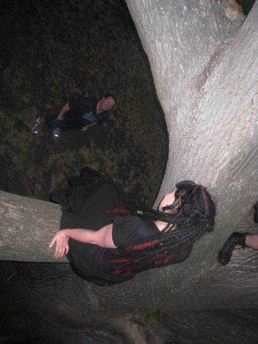 Goths Sitting on Trees (39 pics)