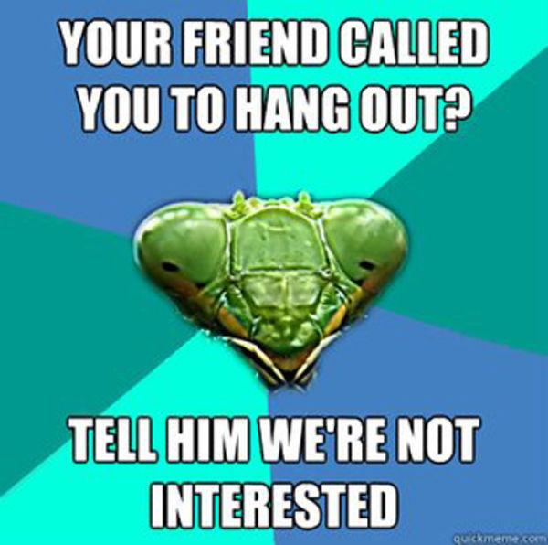 Crazy Girlfriend Meme (25 pics)