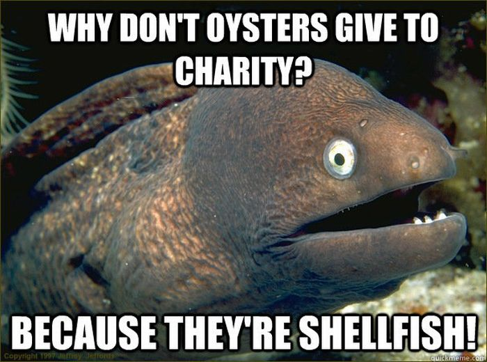 Bad Joke Eel (12 pics)
