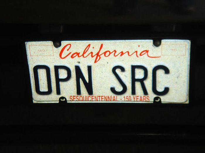 Cool License Plates (15 pics)