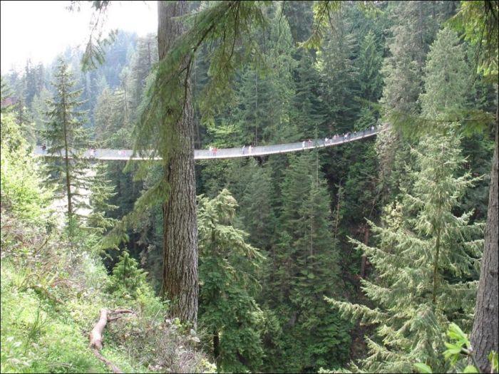 Capilano Suspension Bridge (6 pics)