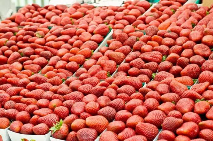 Chocolate Covered Strawberry Footballs (12 pics)