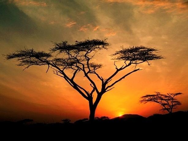 Beautiful Sunsets (30 pics)