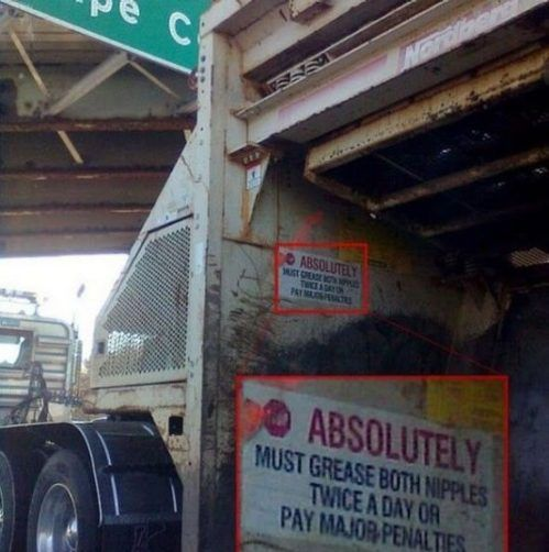 WTF Signs. Part 13 (35 pics)