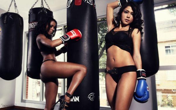 Two Boxer Girls