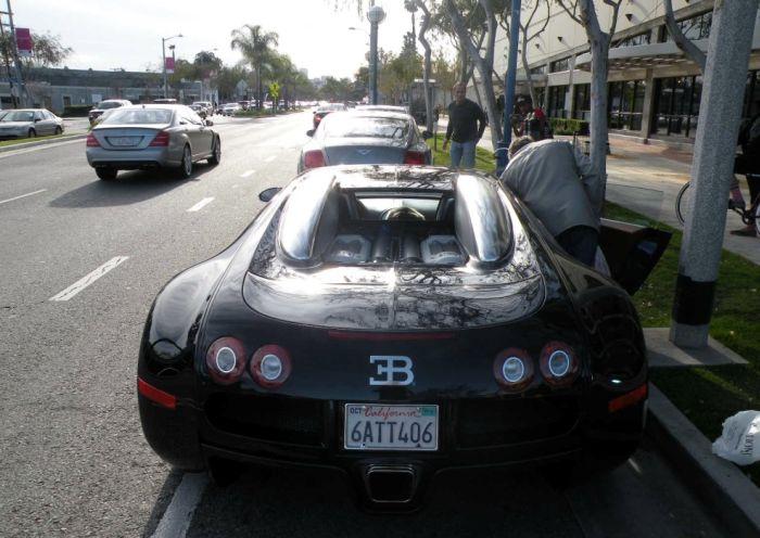 Dog in Bugatti Veyron (10 pics)
