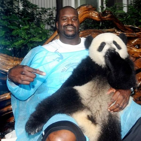 Famous Athletes with Pandas (17 pics)