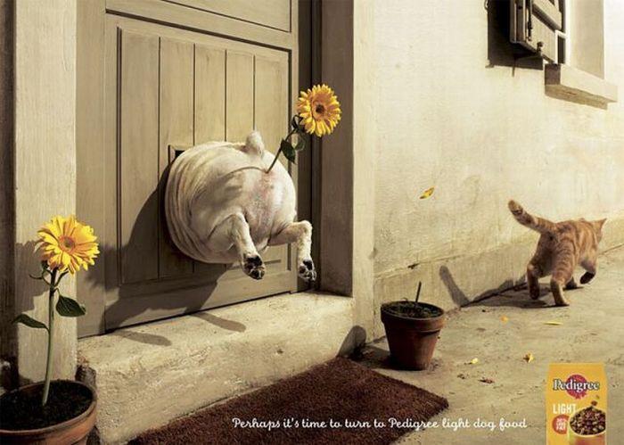 Hilarious Print Ads (43 pics)