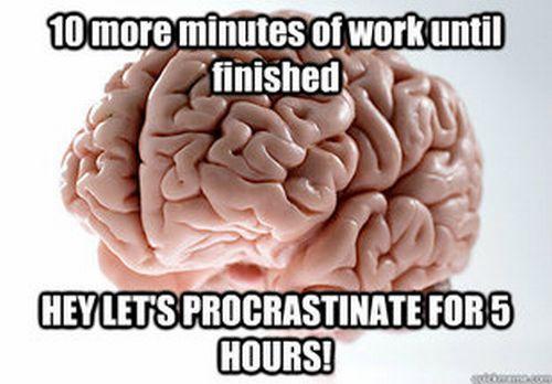 Scumbag Brain (70 pics)