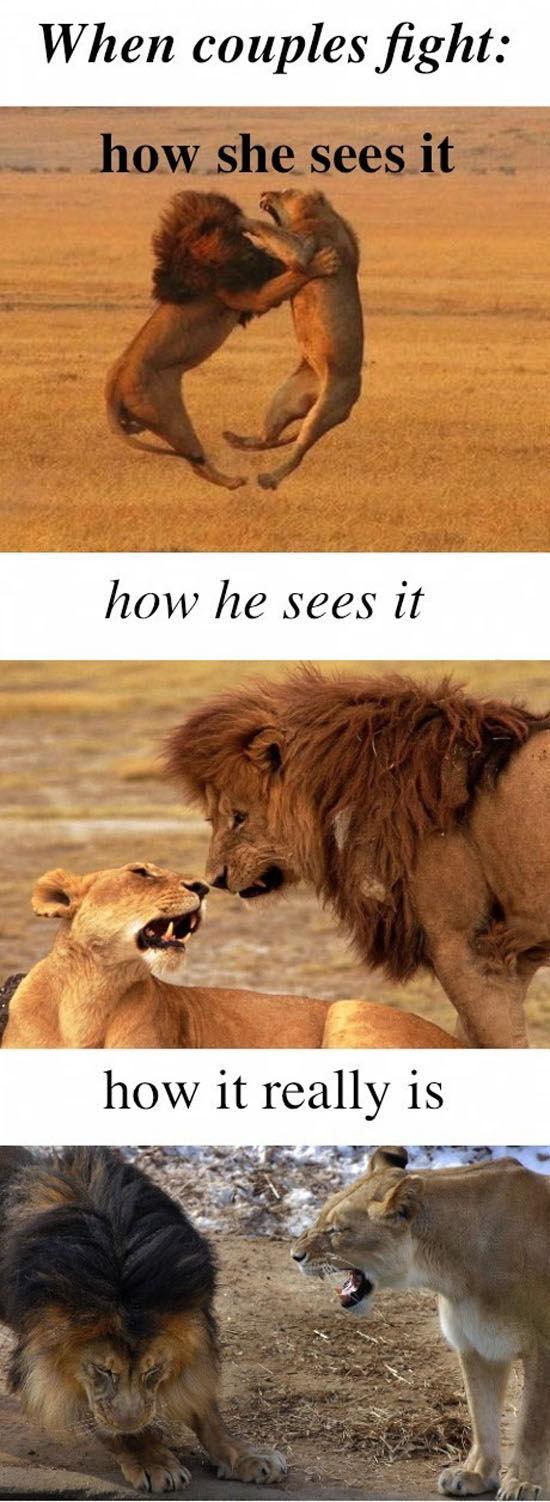 Guys vs. Girls (16 pics)