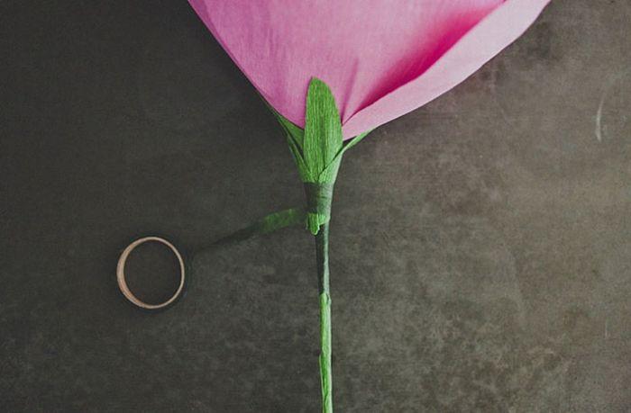 DIY Rose (15 pics)