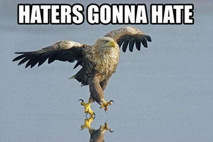 The Best Of Haters Gonna Hate (39 pics)