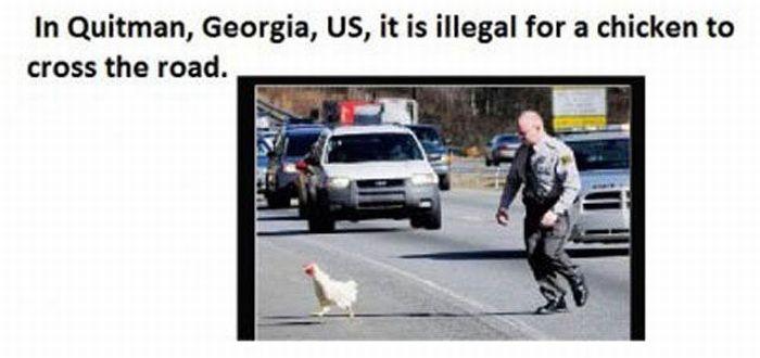 Bizarre Laws (16 pics)
