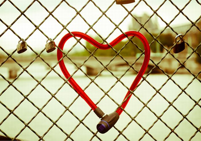 Happy Valentines Day Photos (50 pics)