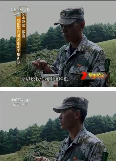 Chinese Snipers at Practice (8 pics)