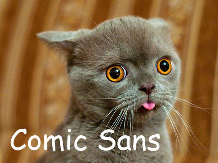 Сats As Fonts (20 pics)