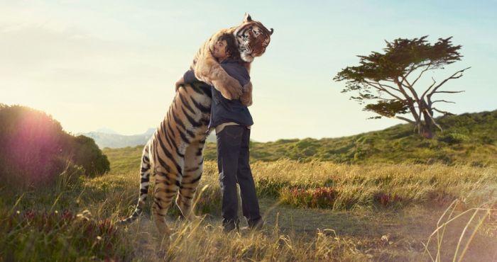 Amazing photos by Frieke Janssens (84 pics)