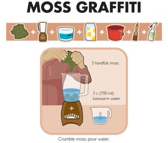 How to Make Moss Graffiti (9 pics)