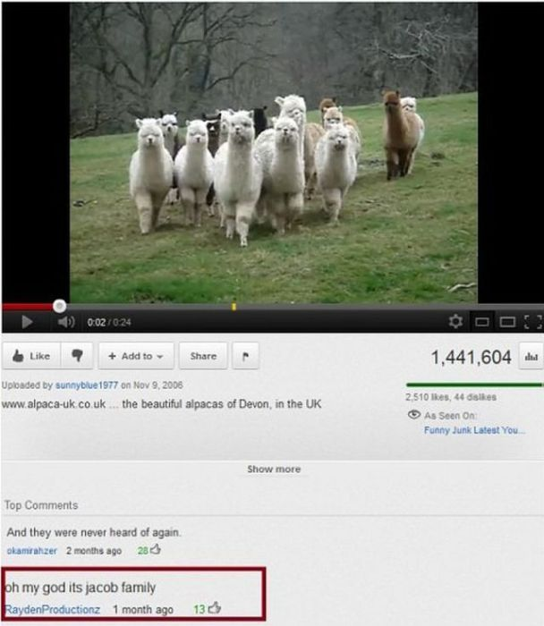 Funny YouTube Comments (18 pics)
