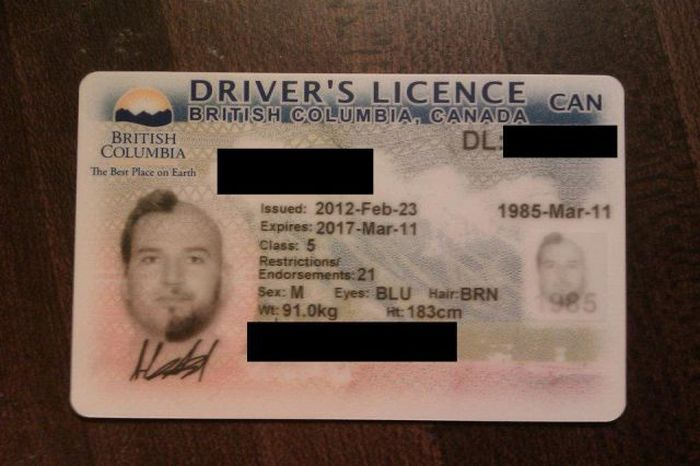 Crazy Photo for Driver's License (10 pics)