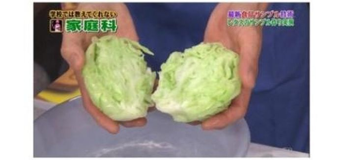 Fake Cabbage. Made in China (8 pics)