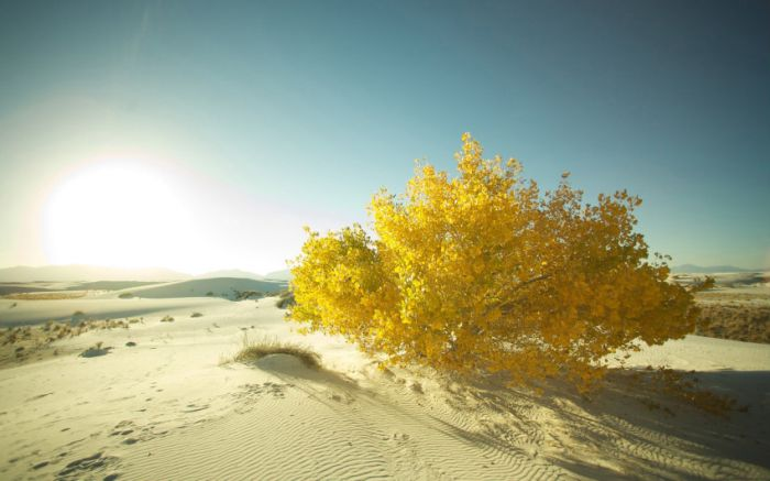 Beautiful Landscapes (50 pics)
