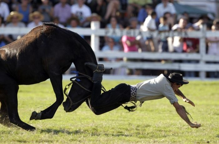 Horses vs Humans (20 pics)