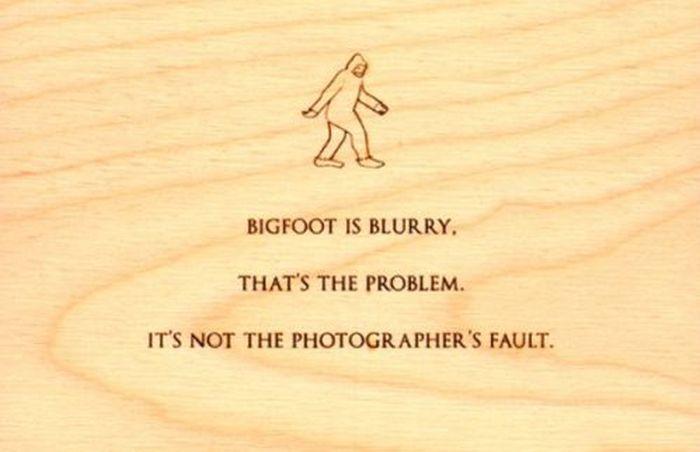 Mitch Headberg's Quotes (8 pics)