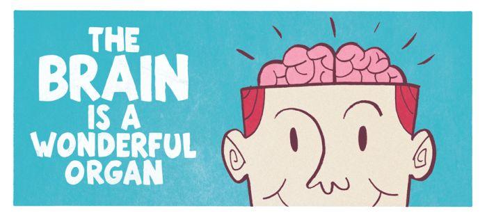 The Brain is a Wonderful Organ (4 pics)