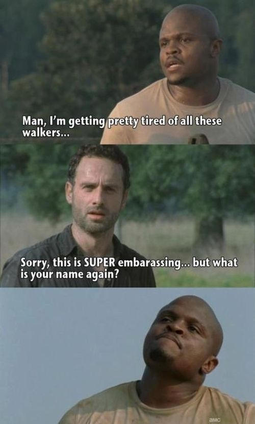"The Best Memes From Season Two Of ""The Walking Dead"" (25 pics)"