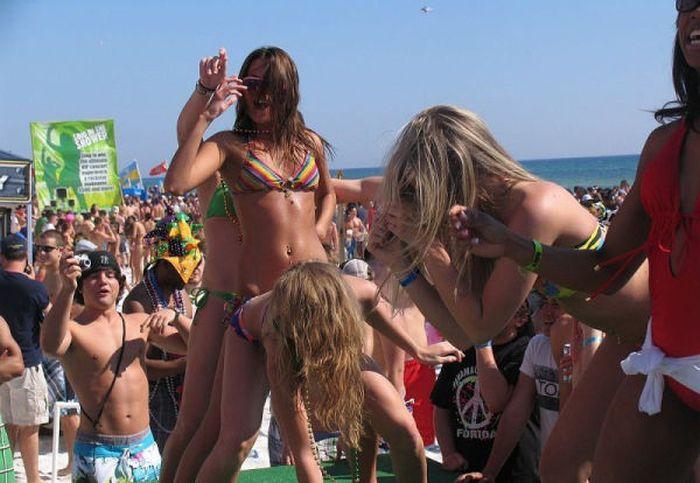 Spring Break Girls (62 pics)