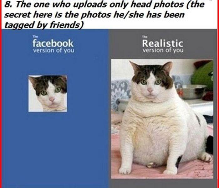 Facebook User Types (34 pics)