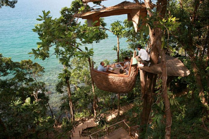 Restaurant at the Treetop (8 pics)