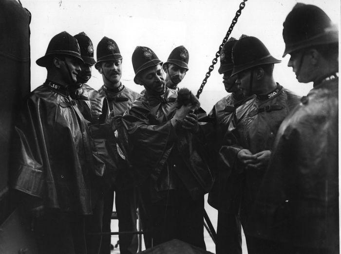 Police, 1890 - 1930 (55 pics)