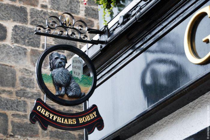 Signs of British Pubs (27 pics)