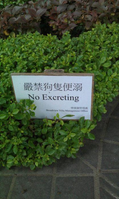 WTF Signs. Part 20 (30 pics)