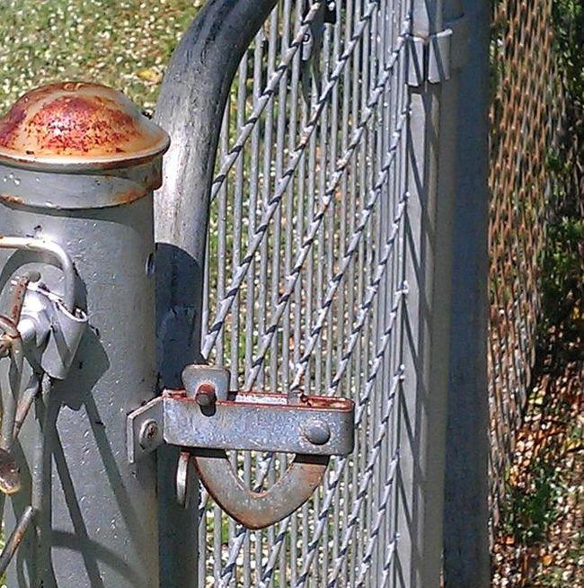 A Guard at the Gate (4 pics)