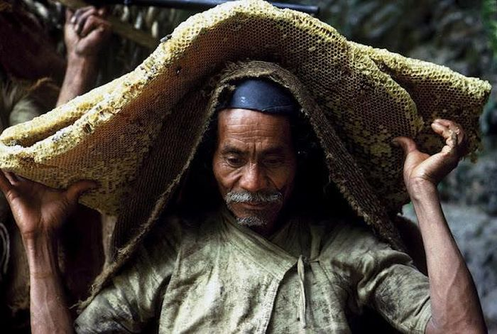 Wild Honey Collectors of Nepal (13 pics)