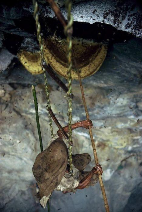 Wild Honey Collectors of Nepal (13 pics)