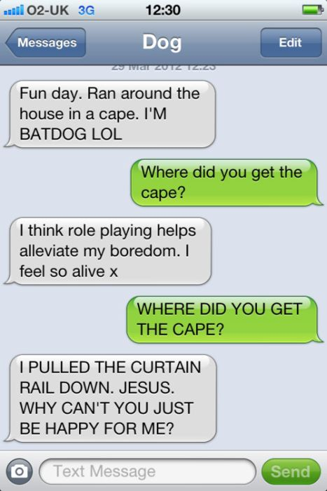 Text From Dog (18 pics)