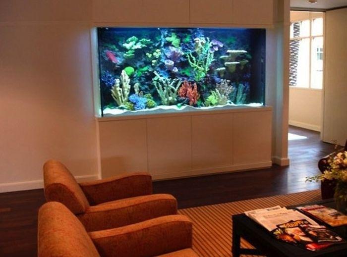 Fish Tanks of Celebrities (16 pics)