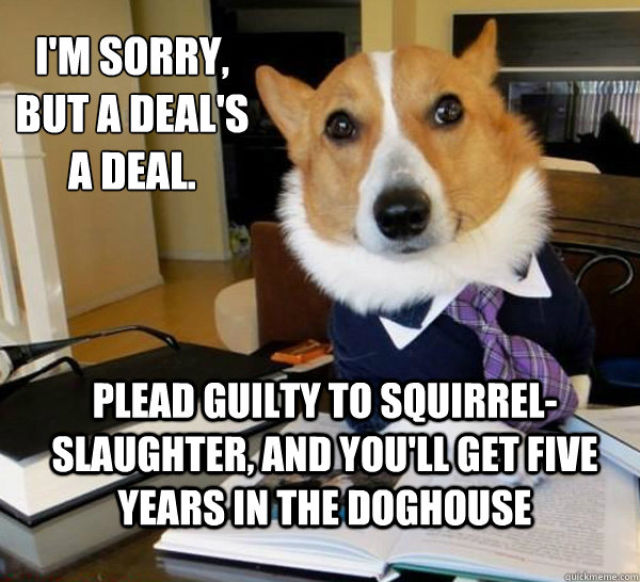 The Best Of The Lawyer Dog Meme (20 pics)