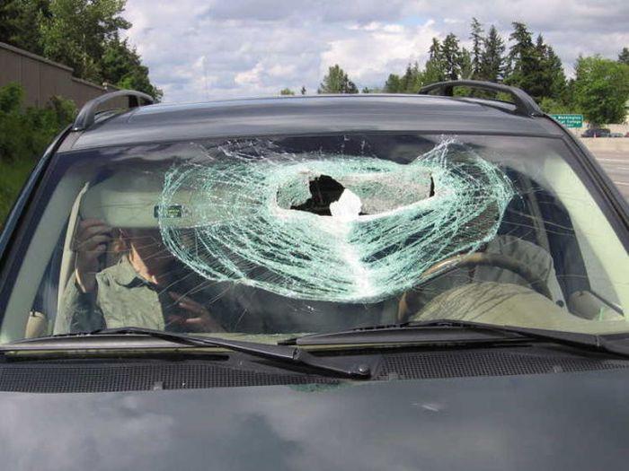 Lucky Couple Survived a Pickaxe Attack (10 pics)