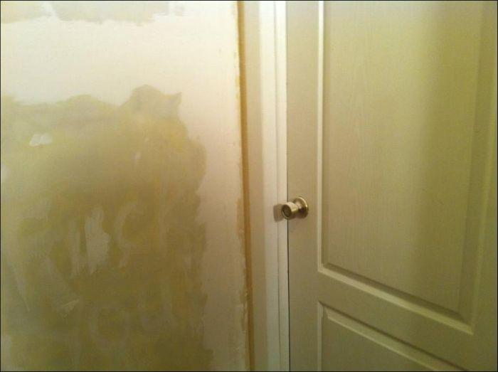 Roommate Prank (22 pics)