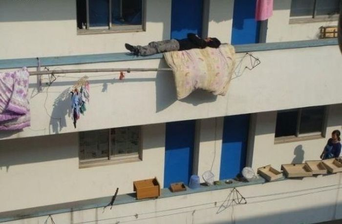 Sleeping Like a Boss (3 pics)