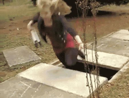 Fails and Wins (50 gifs)